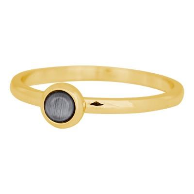 iXXXi ring natuursteen grijs 2mm goud
