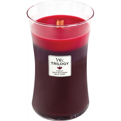 Sun-Ripened Berries Trilogy Large Candle