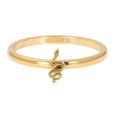 iXXXi Symbol Snake Goud 2mm