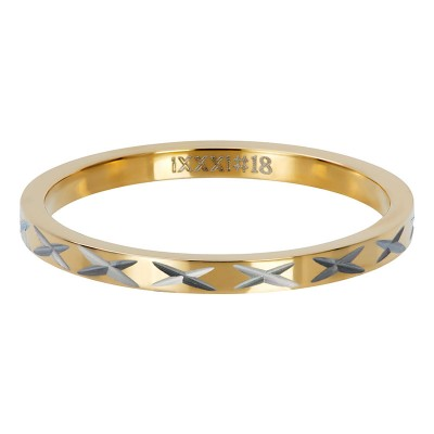 iXXXi ring X Row Goud 2mm